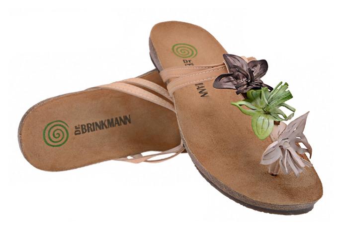 Klapki Japonki Dr Brinkmann 700662-8 Beżowe Kwiaty